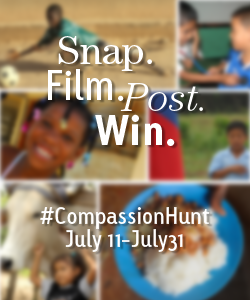 Go On A Photo Scavenger Hunt With Compassion