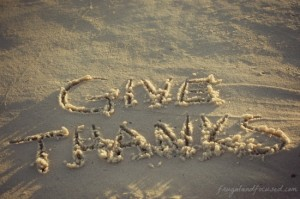 Through The Lens Thursday #79 – Give Thanks