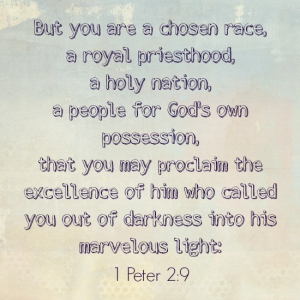 Wednesday Word: Chosen – 1 Peter 2:9