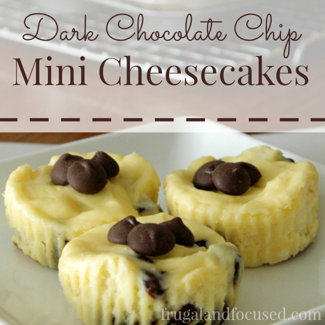 Dark Chocolate Chip Mini Cheesecakes sq