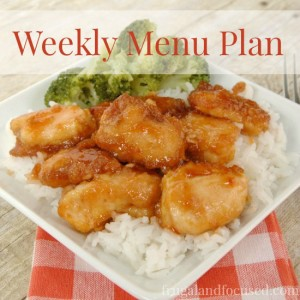 Weekly Menu Plan 12/12/16